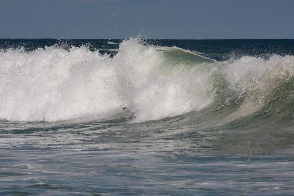 Taget af bølgen – igen